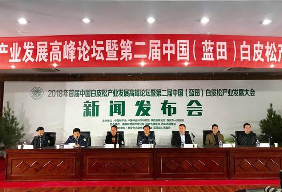 第二届中国(蓝田)白皮松产业发展大会新闻发布会召开