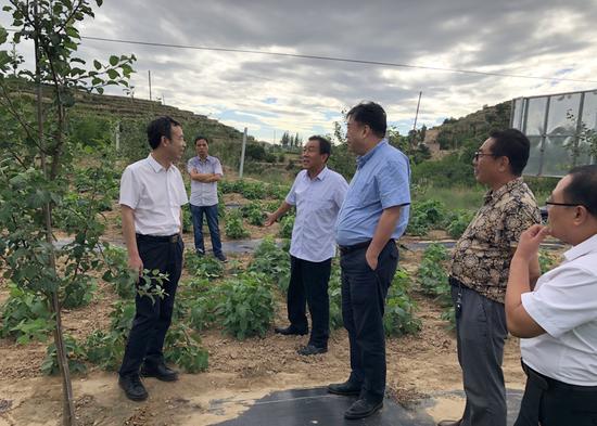 西安外事学院党委书记闵小平(左一),监事会、工会主席高战华(右三)查看果树培植情况
