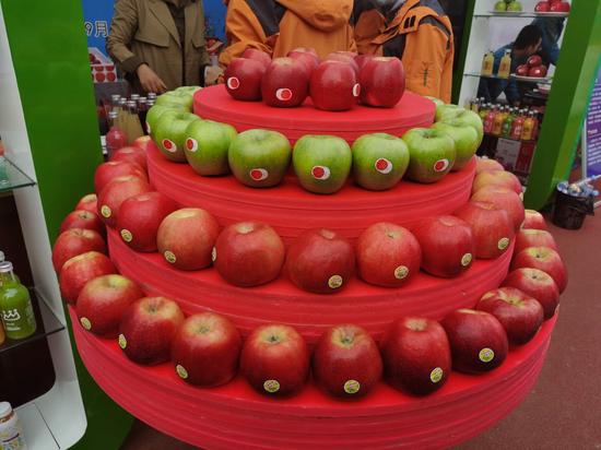 陕西水果网络特色季·苹果丰收节在千阳县举行