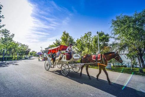 赞!西安世博园荣获2020陕西文明旅游景区