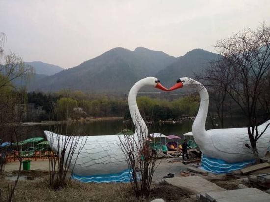 秦岭野生动物园将办七彩风车节