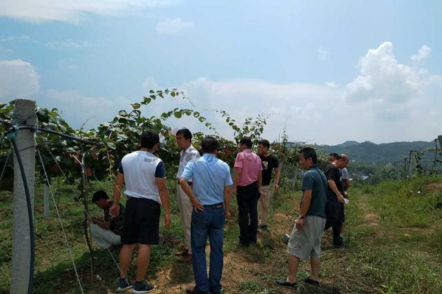 西安市统筹办赴安徽、湖南等地参观学习农村改革经验