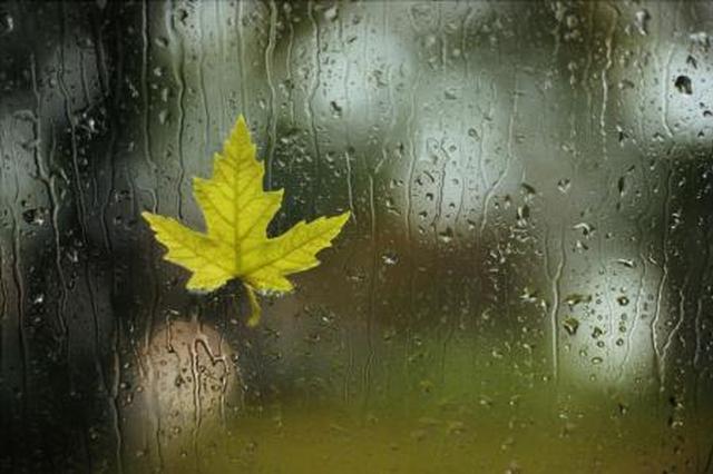 陕西大部今明两天有小到中雨 陕南南部雨势较强