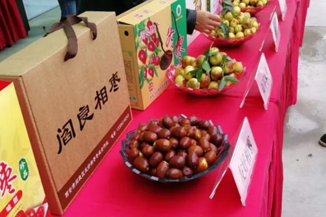 阎良区举办首届特色农产品展销会