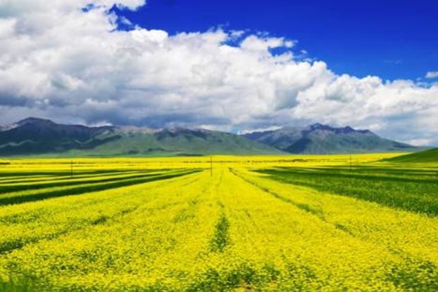 陕西这么美:汉中不只油菜花海 还有世界级天坑群