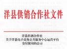洋县电商服务运营平台交付使用