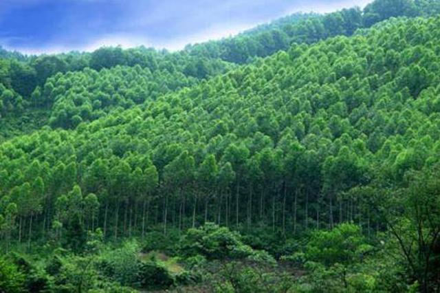 """陕西林业""""五个一批""""开放工程助推生态脱贫"""