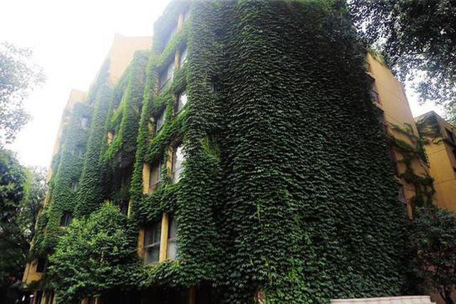 """西安""""绿房子""""成网红 外墙爬满爬山虎"""