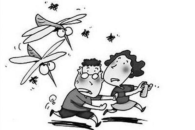 """全国首份蚊子预警地图显示西安是""""重灾区"""""""