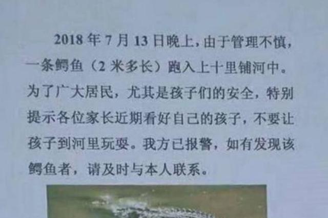 一条2米多的鳄鱼跑了!清涧县正在全境紧急寻找
