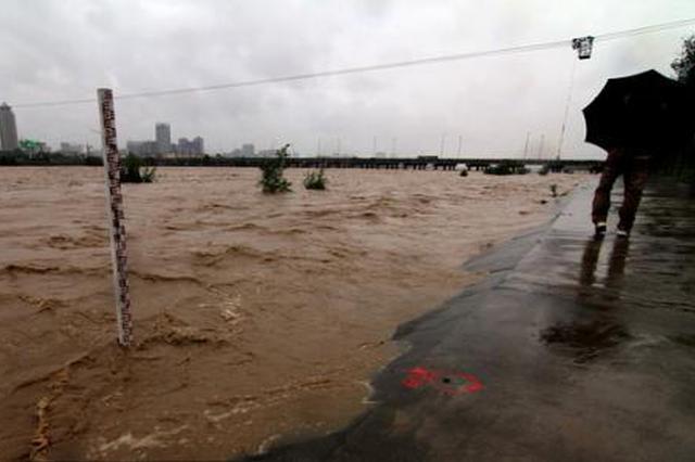 渭河洪水过境 渭南无人伤亡 造成直接经济损失1.53亿