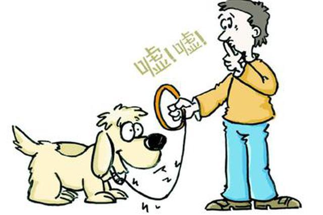 西安9月起乱扔烟头、狗不拴绳等14种行为将被罚