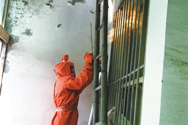 直径半米马蜂窝藏身加油站 消防站一天清理4处