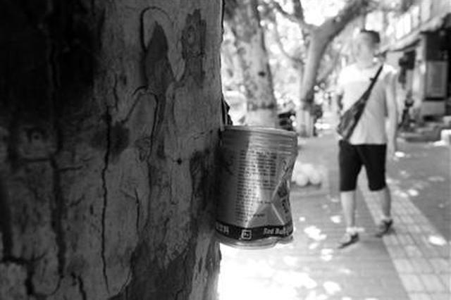 西安行道树被钉上易拉罐收集烟头 引路人不满