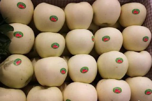 中国成世界最大浓缩苹果汁生产和出口国 陕占近三成