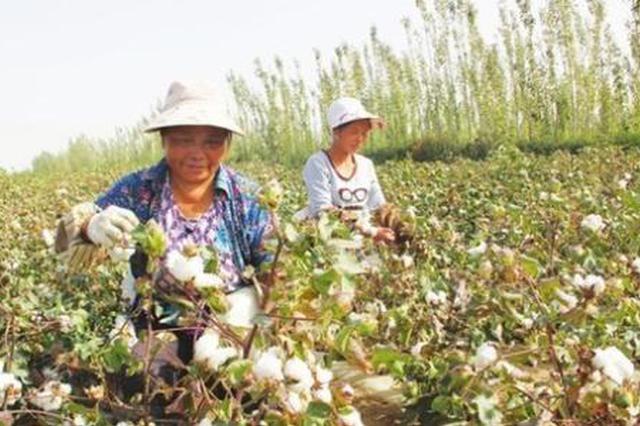 272名陕西务工人员乘坐扶贫专列 前往新疆摘棉花
