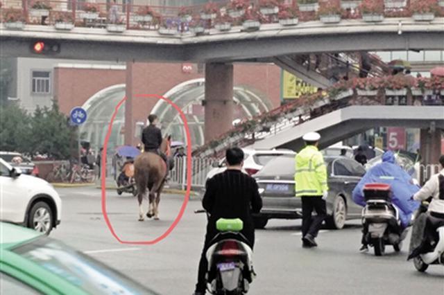 小伙骑马西安街头闲逛 交警:造成堵塞可处罚