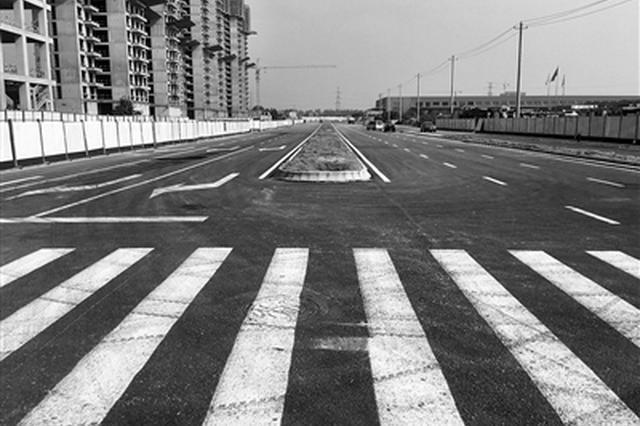 國際港務區兩條道路主車道通車 已累計開通8條道路