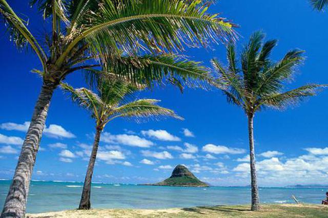 15位乡村校长访学夏威夷 把先进教学经验带回山里