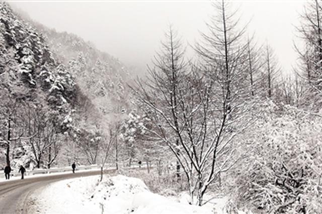 """""""雨雪快递""""已抵陕 秦岭山区积雪深度可达10厘米"""