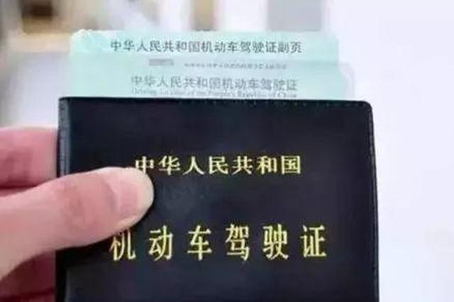 男子花2万元网购假A2驾照开大货车 被行政拘留15日