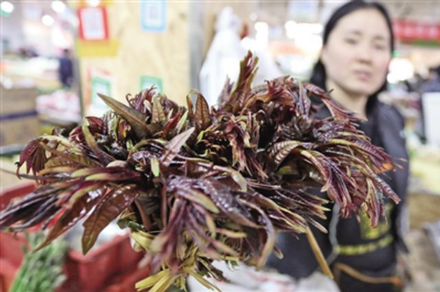 网友称香椿售价堪比龙虾 西安每斤16到23元