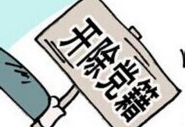 铜川市人大常委会原党组成员、副主任史敏被开除党籍
