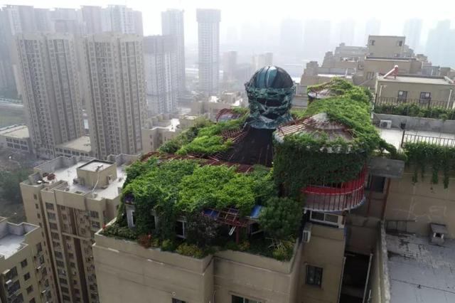 """西安大爷斥资100万打造""""空中花园"""" 美到惊动了城管"""