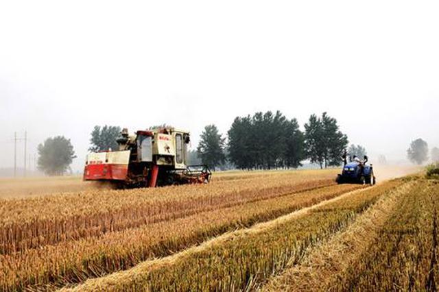 """陕西省一项农业技术贴上""""国字标签""""将全国推广"""
