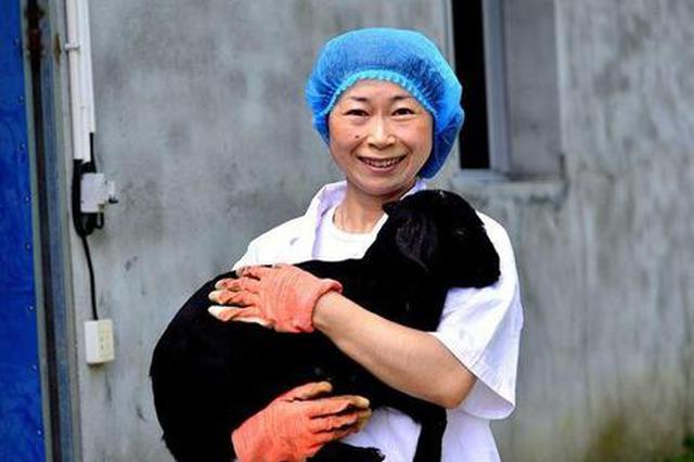 """80后女""""羊倌""""一年挣了15万 给贫困户送100只小羊羔"""