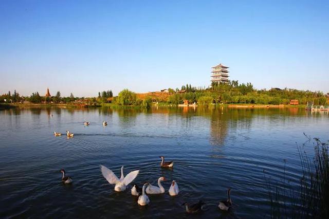 生态兴则经济兴、城市兴、文明兴——浐灞生态区的初心和15年