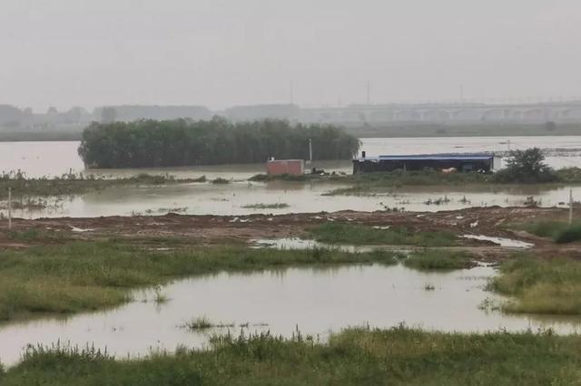 紧急!高铁停运、洪水将复涨,渭河下游持续超警戒!