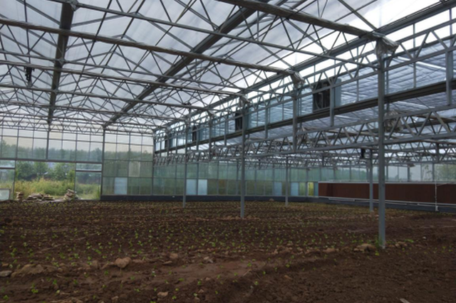 西安高新区首个产业扶贫订单种植项目签订