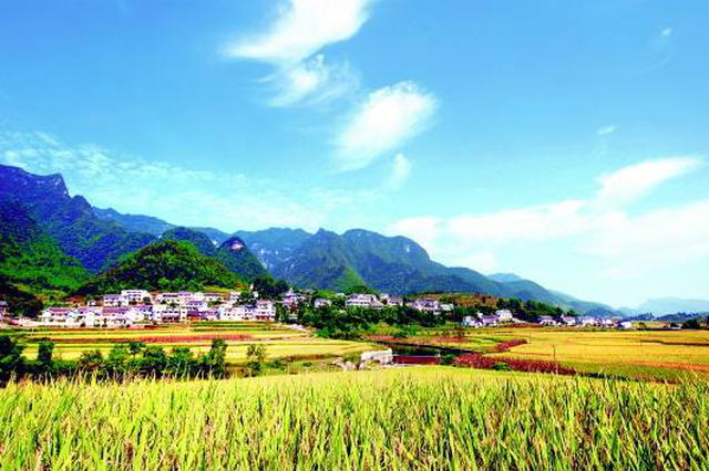 陕西共有地理标志产品86个 地理标志证明商标128个