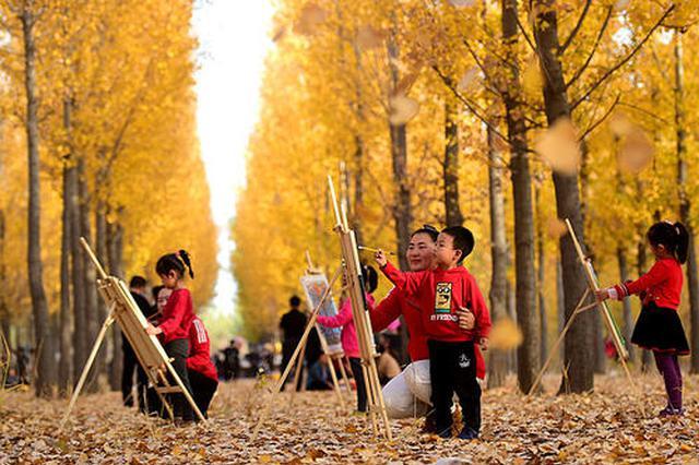 节后旅游市场价格下调 赏秋游美食游开启金秋之旅
