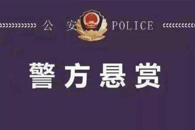 葛七宝案多人涉黑在逃 悬赏缉捕最高奖10万元