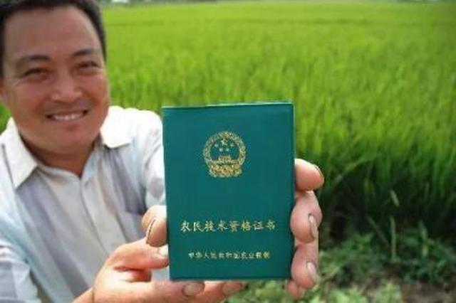 陕西:职业农民异军突起 农民增收屡建奇功