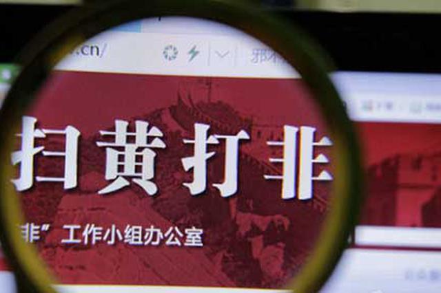 """""""秋风2019""""专项行动 我省公布三起已判结典型案件"""