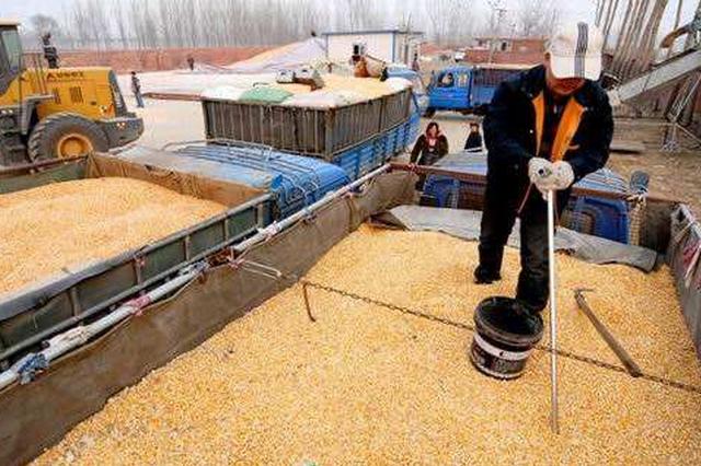 陕西建成42个粮食质检机构 保障全省粮食质量安全