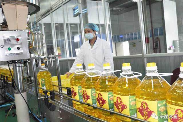 日总加工能力26050吨 陕西省72家粮油加工企业开工