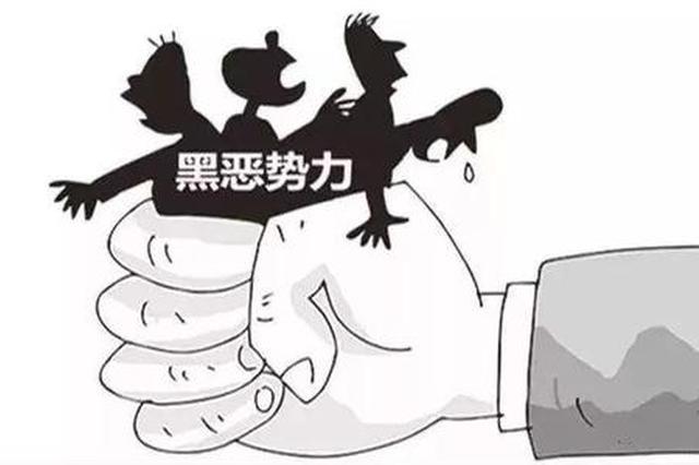 陕西开展农业农村重点领域专项整治 打击涉黑涉恶问题