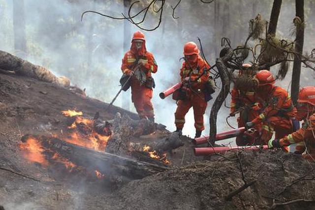 陕西省2019年森林火灾典型案例通报!多人被判刑!