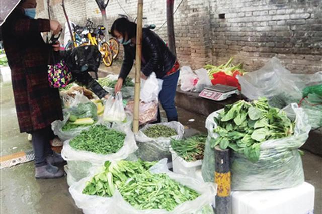 西安市民购买野菜热情高 食用野菜这些方面要注意