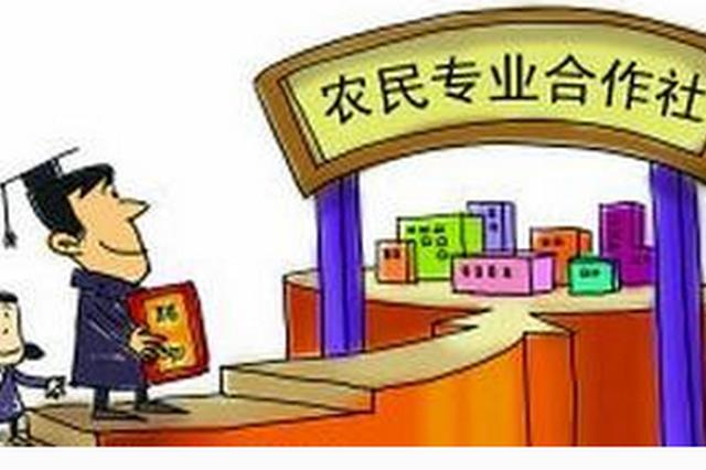 陕西省农民专业合作社百强示范社达到310家