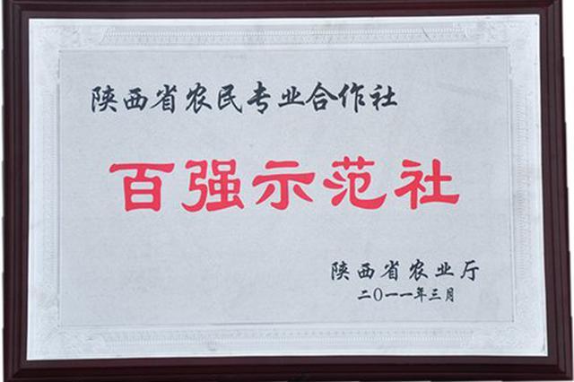 陕西新增57家省级百强示范社 宝鸡市最多共15家