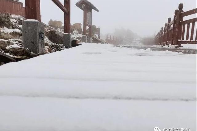 宝鸡太白山突然降雪 花草树木全被皑皑白雪笼罩