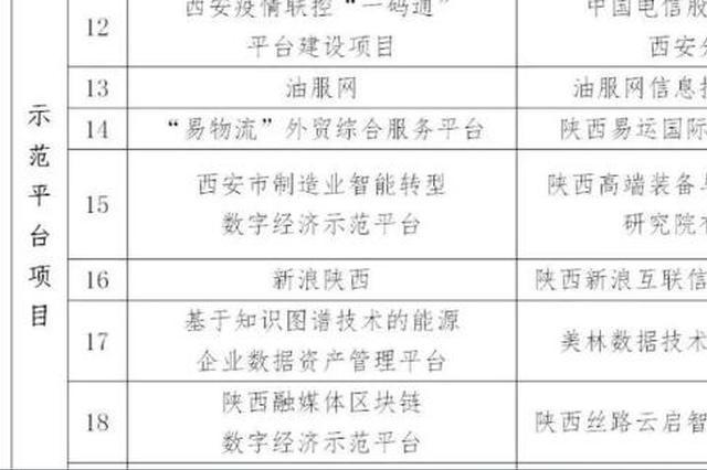 西安市首批数字经济试点示范名单公示 新浪陕西入围