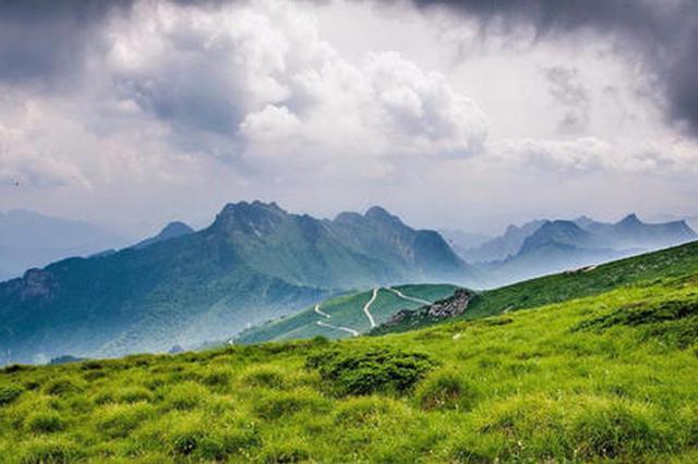 """陕西秦岭区域6个国家级自然保护区被评估为""""优"""""""