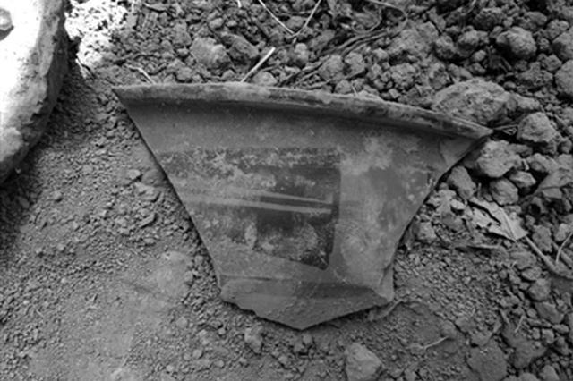 白水县杜康沟发现龙山时期文化遗存 距今4500多年