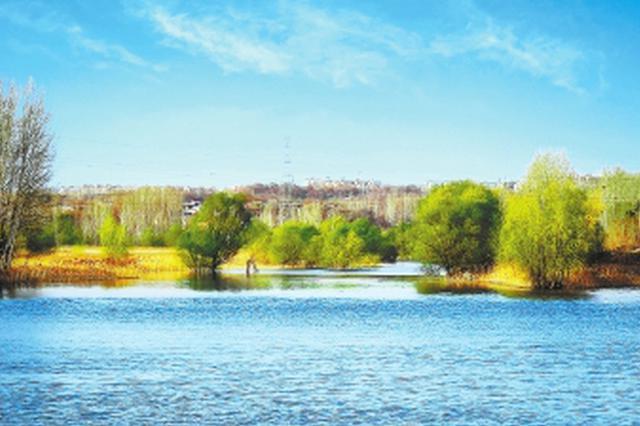 合阳金水河湿地公园对外开放 已完成造林绿化7000余亩